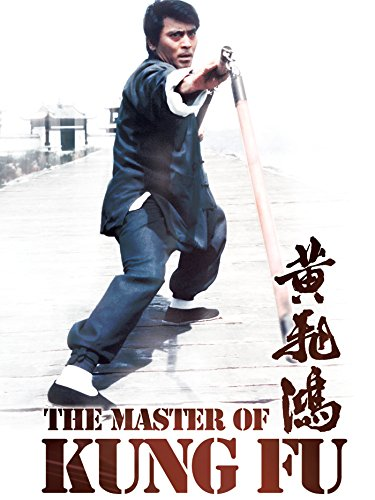 the-master-of-kung-fu