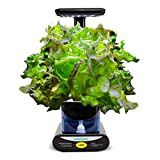 AeroGarden Heirloom Salad Greens Seed Pod Kit, 3