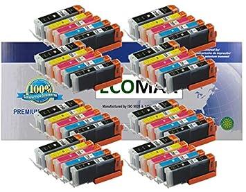 Amazon.com: ECOMAX 40 Pack – Canon PGI-250 X L & CLI-251 X L ...