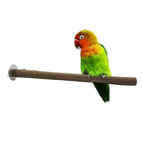 Patzbuch Perchas de Madera de Loro, Perca para Mascotas, Jaula de pájaros, Ramas de Madera cruda, Estante para Perchas, Juguete para Loro, cacatú Gris ...