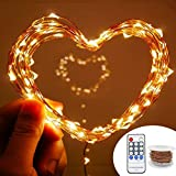 Lachesis Dimmable LED Starry String Lights, (66 Ft, 200 Leds, Copper Wire Lights with UL Certified), Waterproof Firefly Lights for Christmas, Wedding,