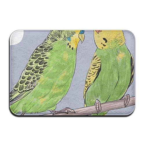 monogram doormat Lovely Parakeets Outside Door Mats 15.7 X23.6-Inches (Hip Mini Monograms)