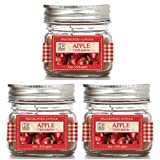 Hosley's Set of 3 Apple Cinnamon Jar Scent Candle – 4oz Each. Ideal votive GIFT for party favor, weddings, Spa, Reiki, Meditation, Bathroom settings O9.