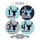 12 Monthly Baby Stickers, Boy, Deer, Antlers, Baby Belly Stickers, Baby Month Stickers, First Year Stickers Months 1-12, Chevron, Blue, Navy, Navy Blue, Aqua, Teal, Gray, Grey, Woodland, Baby Boy
