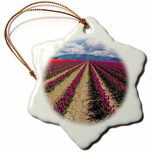 Ornaments to Paint Danita Delimont - Flowers - Usa, Washington State, Mount Vernon, tulip fields bloom - ()