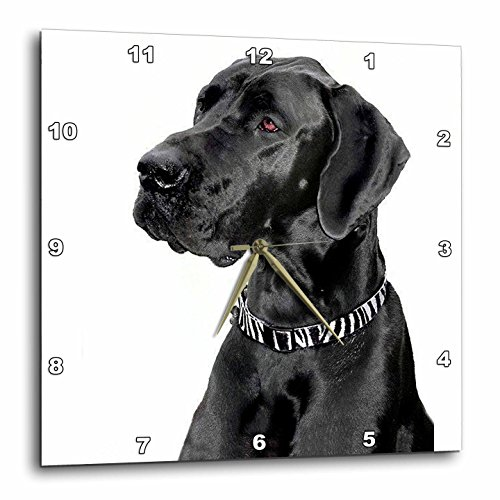 3dRose LLC Black Great Dane 10 by 10-Inch Wall Clock Review