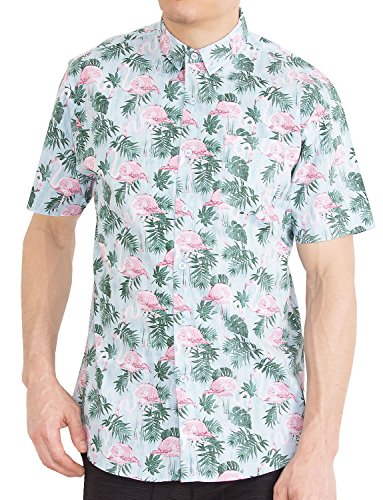 Visive Mens Hawaiian Shirt Short Sleeve Button Down Blue Plane Shirts (Airplane,Medium)
