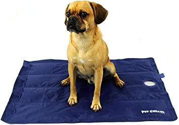 Playapup Pup Chiller Cooling Mat Pressure Activated Non Toxic Gel Blue
