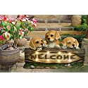 Garden Statues Solar Powered Welcome Sign, 14 Inch Dog Figurines with LED Lights, Resin Garden Decor
