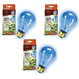 (3 Pack) Zilla Day Blue Light Incandescent Bulb for Reptiles Watt: 75 Watts