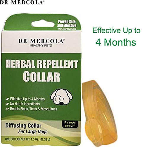 Dr. Mercola Herbal Repellent Collar For Large Dogs with Natural Active Ingredients, Long-lasting Flea Prevention - Odorless, Safe and Waterproof Flea Collars Effective Up To 4 Months, Necks up to 27'' by Dr. Mercola (Image #1)'