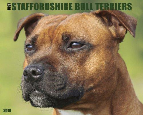 Bull Terrier 2010 Calendar - Just Staffordshire Bull Terriers 2010 Calendar