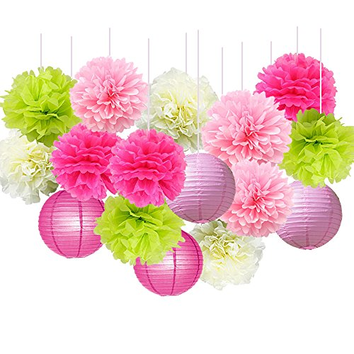 16pcs Pom Poms Decorations Tissue Paper Flowers Ball Mixed Paper Lanterns Craft Kit for Pink Themed Birthday Party Decor Baby Shower Decor Bridal Shower Decor Wedding Party Decorations Paper Lanterns Craft