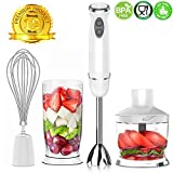XProject HB-2028 Immersion Powerful 4-in-1 Stainless Hand Blender...