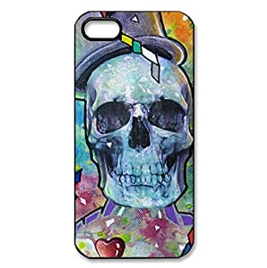 Colorful Skull theme hard back shell for iPhone 5/5s