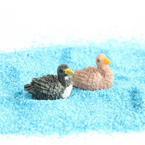 Oruuum Miniature Fairy Garden Herd of Ducks, Set of 6 Review
