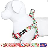 Blueberry Pet New Step-in Spring Scent Inspired Floral Rose Print Turquoise Dog Harness - Chest Girth 20