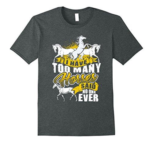 Mens I HAVE TOO MANY HORSES Funny Horse Horsemanship T-Shirt XL Dark Heather Too Many Ponies