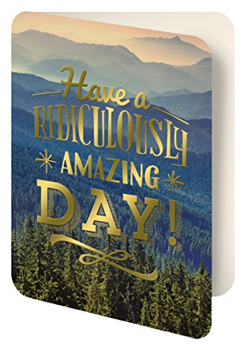 Studio Oh! Foil Stamped Artisan Notecards, Have a Ridiculously Amazing Day