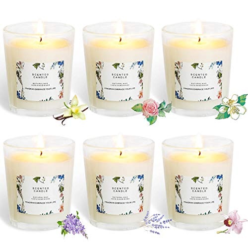 (YYCH Set of 6 Scented Candles 100% Soy Wax Glass, Home Fragrance Candle Gifts)