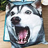 JIN DI LONG JJ Cartoon Thin Quilt Student Kindergarten Washable Printing Cool Breathable Realistic Dog Shaped Air Conditioner Quilt Comforter (86 x 95 inches, Husky-2)