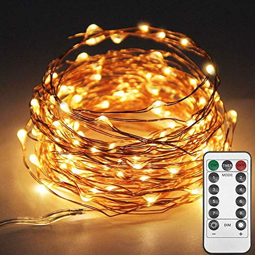Twinkle Star 33ft 100LED Copper Wire String Lights Fairy String Lights 8 Modes LED String Lights USB Powered with Remote Control for Wedding Party Home Christmas Decoration