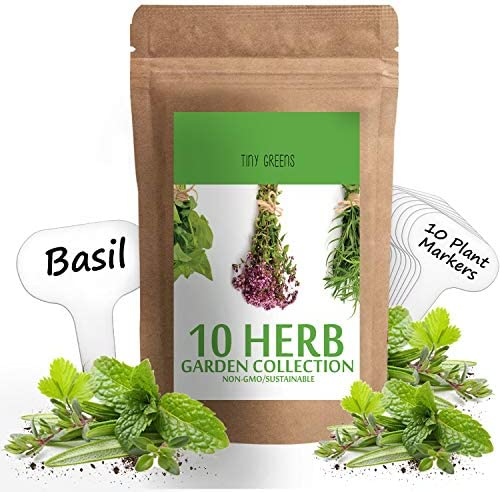 Herb Seeds Vault 10 Variety product image