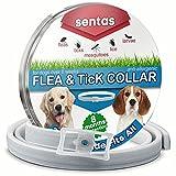 Dog Flea Treatment Collar - Sentas Flea and tick prevention for dogs by, dog flea collar, flea tick prevention, flea treatment for dogs, flea protection, pet flea collars, flea & tick control for big small dogs (25 inch)