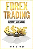Forex Trading: The Beginner's Crash Course