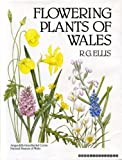 img - for Flowering Plants of Wales book / textbook / text book