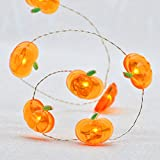 Harvest String Lights, Impress Life Pumpkin Lights 10 ft Copper Wire 40 LEDs New Battery-powered for Thanksgiving, Tent Wedding, Halloween, Birthday Parties, DIY Decorating with Remote & Timer