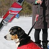 Kurgo Duty Bag for Dogs | Refillable Dog Poop Bag