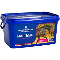 Dodson & Horrell Milk Thistle Horse Food, 500 G