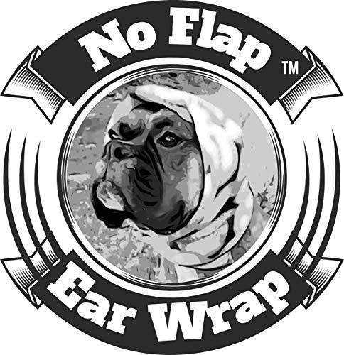 Dog Ears Food Allergies