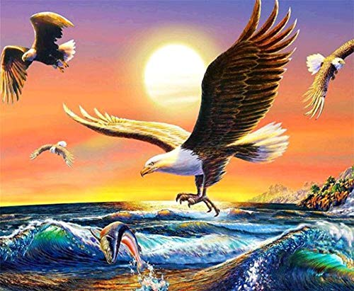 DIY 5D Diamond Painting by Number Kits, Crystal Rhinestone Diamond Embroidery Paintings Pictures Arts Craft for Home Wall Decor Soaring Eagle and sea (Soaring Eagle Embroidery)