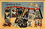 Greetings From Nevada Original Vintage Postcard