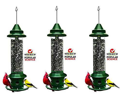 "Squirrel Buster Plus 6""x6""x28"" (w/Hanger) Wild Bird Feeder Cardinal Ring 6 Feeding Ports, 5.1lb Seed Capacity (3-(Pack))"