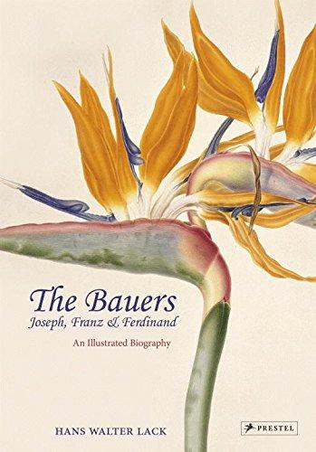 The Bauers: Joseph, Franz & Ferdinand: Masters of Botanical Illustration [Hans Walter Lack] (Tapa Dura)