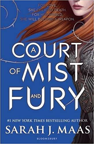 Image result for a court of mist and fury