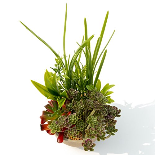 BEGONDIS Artificial Succulents Plants Plastic Fake Topiary Selected Combination With Gray Pot For Home Décor by BEGONDIS