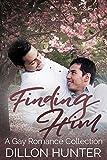 Download Finding Him in PDF ePUB Free Online