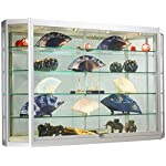 Wall-Mounted Silver Aluminum Glass Display Cabinet, Illuminated, Angled Front, Illuminated, Locking Sliding Doors, Ships Fully Assembled