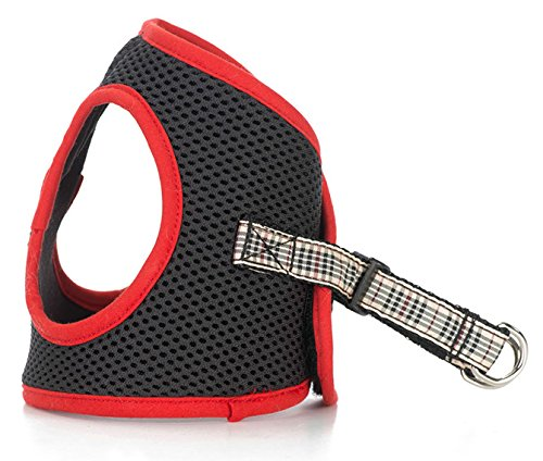 Luca for Dogs Luca For Dogs Step-In Style Harness for Dogs, Red-Burberry, Small, - Burberry Style Com