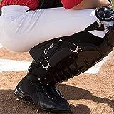 Champion Sports Catcher's Knee Support