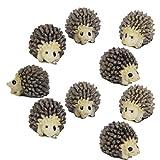 10pcs Miniature Dollhouse Bonsai Fairy Garden Landscape Hedgehog Decor
