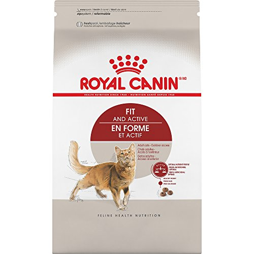Royal Canin Feline Health Nutrition Fit And Active Dry Adult