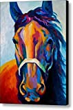 Horse Art Prints On Canvas Animal Painting For Home Decoration,Horse Pattern,19 x 25 inch canvas