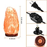 PULNDA Salt Lamp Himalayan Rock Lamp Glow Hand Carved Natural Crystal Amber Light with Dimmer Control