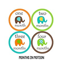 Months in Motion 097 Monthly Baby Stickers Gender Neutral Elephants Months 1-12 by Months In Motion