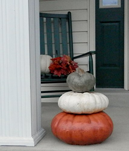 Stackable Pumpkins Set of 3, Artificial Halloween Stone Pumpkin & Cinderella Jacko'lantern Artificial Gourd Indoor and Outdoor Decor
